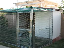 building a chicken coop inexpensively backyard chickens