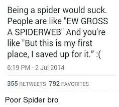 Spider Bro Meme - phtdippus projec spider bro spider meme on me me