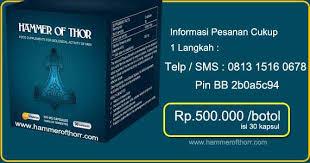 dicari agen hammer of thor indonesia obat kuat thors hammer