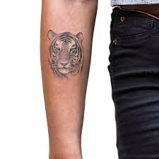 small tiger by sameoldkid on deviantart