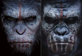 Planet Of The Apes Meme - the truth about planet of the apes caesar and koba ign