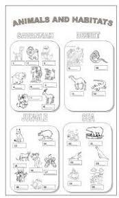 animal habitat worksheets for 2nd grade free worksheets library