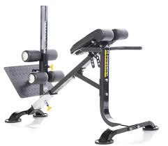 powertec dual hyperextension crunch p hc15 fitness factory outlet