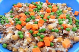 cody u0027s blend homemade dog food recipe