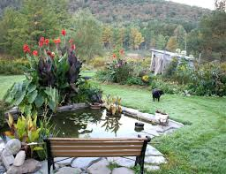 Rustic Wooden Outdoor Furniture Bench Making A Scarecrow Wonderful Rustic Garden Bench Pond And