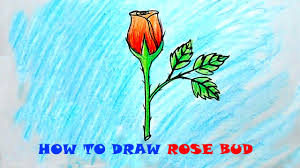 how to draw and color a rose bud easy youtube