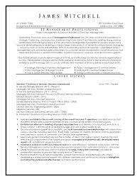 Professional Resumes Samples by Executive Resume Samples Australia Executive Format Resumes By