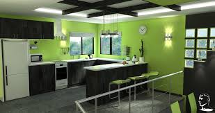 green color modern kitchen cabinets design zooyer cool interior modern lime and black kitchen by bboyjme on deviantart attic renovation indoor design home