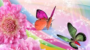 images of flowers and butterflies qygjxz