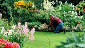 what do landscapers do 13 things your landscaper won t tell you expert landscaping tips