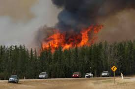 Wildfire Bc Tracker by Climate Change Sparking Need For National Forest Fire Plan
