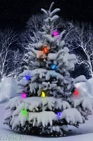 Animated Pictures Of Christmas Decorations by 30 Amazing Christmas Tree Gifs To Share Best Animations