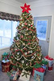 keep your tree in tip top shape seasons trees and christmas trees
