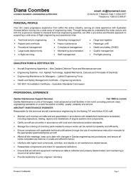 Resume Computer Skills Example by Resume Template Curriculum Vitae Examples Graduate Students