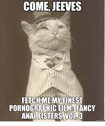 Pornographic Memes - come jeeves fetch me my finest pornographic film fancy analfisters