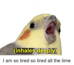 So Tired Meme - inhales deeply i am so tired so tired all the time time meme on
