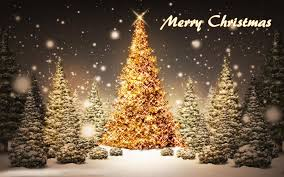 merry christmas tree hd wallpaper free download techbeasts