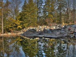 6 things to know before you install a residential swimming pond