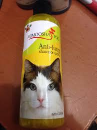 Sho Kucing Anti Jamur jual sho kucing dr pets anti jamur anti kutu cat kitten cek harga