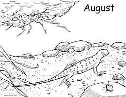crocodile coloring page coloring pages gallery