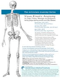 the language of anatomy review sheet 1 gallery learn human