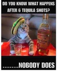 Funny Tequila Memes - dieting is hard drink tequila tequila tequilacocktail