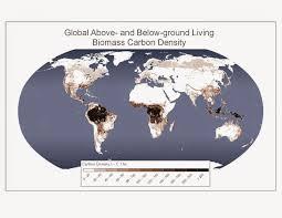 climate stupidity and human survival aletho news