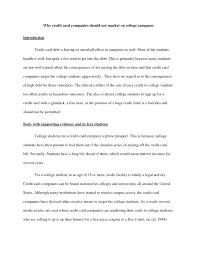 essay sample for university