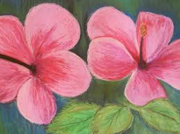 A Garden Of Flowers by Pastel Drawings Of Flowers The Helpful Art Teacher A Garden Of