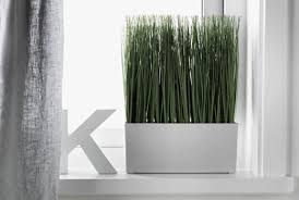 Ikea Large Floor Vase Plants Plant Pots U0026 Stands Plants Ikea