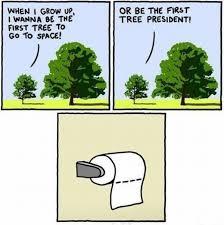 Tree Puns Tree Jokes 9 Jokesaz