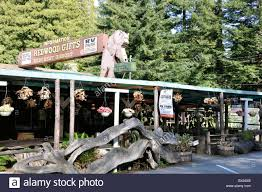 house gift eternal tree house gift shop at redwoods national park california
