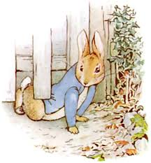mr mcgregor s garden rabbit the tale of rabbit literawiki fandom powered by wikia