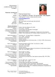 Sample Resume Senior Software Engineer by 85 Sample Resume For Software Engineer With Experience In Java