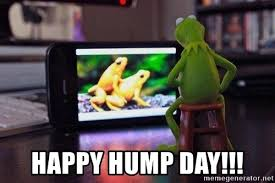 Meme Porn - happy hump day kermit watching frog porn meme generator