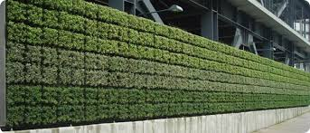 great green vertical wall vertical garden wall panels alices