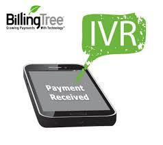 Seeking Text Financial Institutions Seeking Payments Via Mobile Text And Ivr