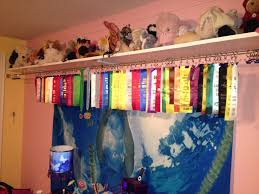 ribbon display swimming ribbon display idea those hooks might get costly but