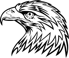 eagle images free free download clip art free clip art on