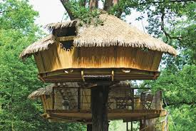keyc s tree house the most hotels in trees in