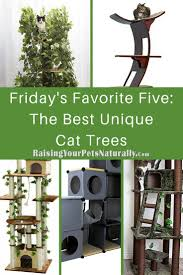 Unique Cat Furniture Friday U0027s Favorite Five The Best Unique Cat Trees For Cats