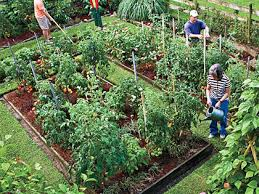 planting a vegetable garden a monthly guide myrecipes