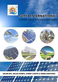 Solar Plant Lights by Surya International Solar Power Plant Installation