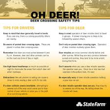West Virginia travel safety tips images 20 best road safety images driving safety safety jpg