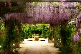 wedding venues in boise idaho the botanical gardens are beautiful but i still miss huntington