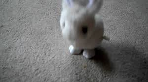 halloween wind up toys my cute wind up bunny toy youtube