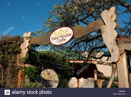 famous tree houses the famous tree house cafe in ganges saltspring island canada