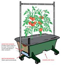 How To Make A Self Watering Planter by Young Urban Farmers Why We Love Self Watering Containers