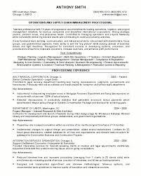 resume value statement lukex co