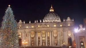 vatican christmas tree resource learn about share and discuss